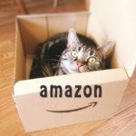 【おむつが安い】amazonプライムは《アマゾンファミリー》より得?