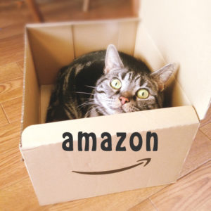 アマゾンのダンボールに入った猫
