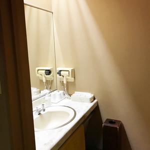 銀水荘一般客室洗面台