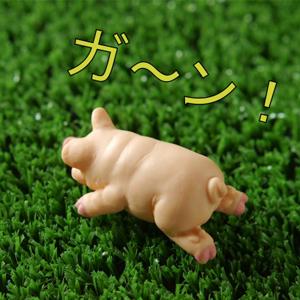 落ち込む豚